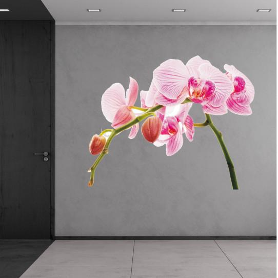 stickers orchid e des prix 50 moins cher qu 39 en magasin. Black Bedroom Furniture Sets. Home Design Ideas