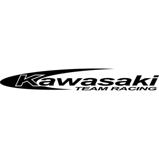 kawasaki team racing