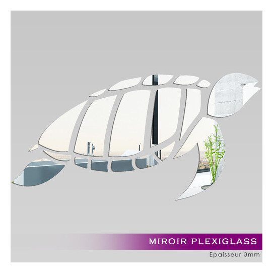Miroir plexiglass acrylique tortue des prix 50 moins for Miroir acrylique