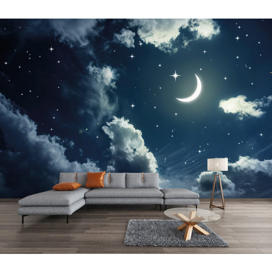 papier peint ciel toil lune des prix 50 moins cher qu. Black Bedroom Furniture Sets. Home Design Ideas