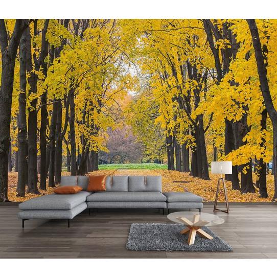 Papier peint forêt   Des prix 50% moins cher qu'en magasin
