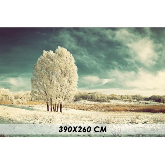 Papier peint forêt neige