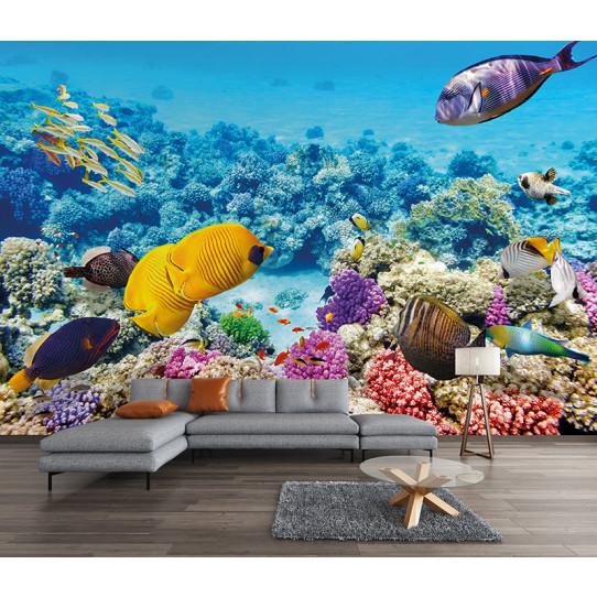 papier peint poissons des prix 50 moins cher qu 39 en magasin. Black Bedroom Furniture Sets. Home Design Ideas