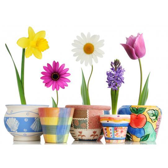 Stickers Pots de Fleur