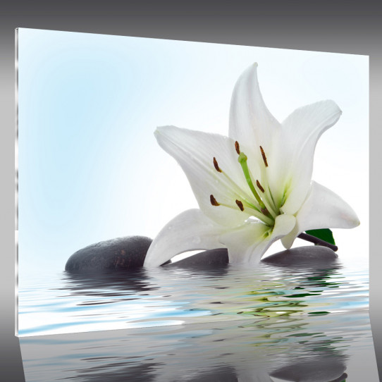 vase en plexiglas pas cher mm thickness a acrylic plexiglass clear red black white pink green. Black Bedroom Furniture Sets. Home Design Ideas