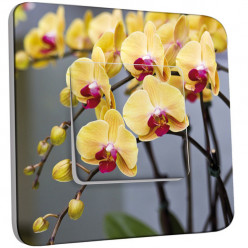 Interrupteur Décoré Simple Va et Vient - Orchidée jaune