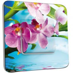 Interrupteur Décoré Simple Va et Vient - Orchidées
