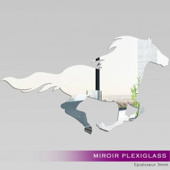 Miroir Plexiglass Acrylique - Cheval