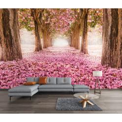 Papier peint allée forêt rose