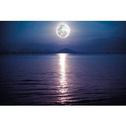 Poster - Affiche mer pleine lune