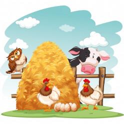 Stickers ferme vache, poules, hibou