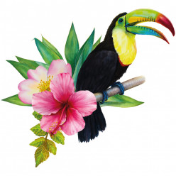Stickers oiseau toucan