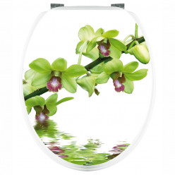 Stickers WC Branche d'Orchidée