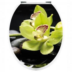 Stickers WC Orchidée verte
