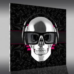 Tableau Plexi Skull