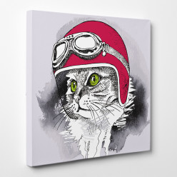 Tableau toile - Chat Cool 5