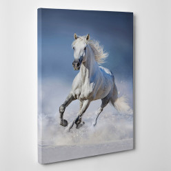 Tableau toile - Cheval 2