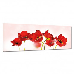 Tableau toile - Coquelicots 12