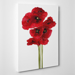 Tableau toile - Coquelicots 3