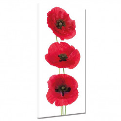 Tableau toile - Coquelicots 9