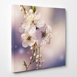 Tableau toile - Fleurs 10