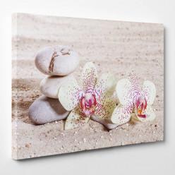 Tableau toile - Fleurs Galets 3