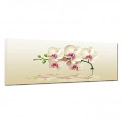 Tableau toile - Orchidée 17