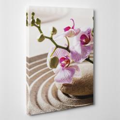 Tableau toile - Orchidée