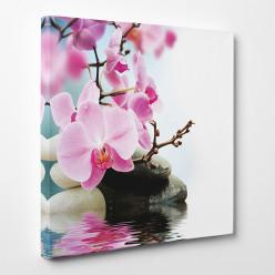 Tableau toile - Orchidées 14