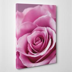 Tableau toile - Rose Zoom