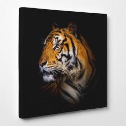 Tableau toile - Tigre 16