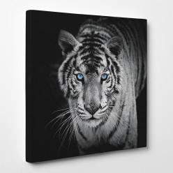 Tableau toile - Tigre 4