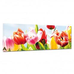 Tableau toile - Tulipes