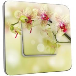 Interrupteur Décoré Simple Va et Vient - Branche d'Orchidée