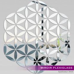 Miroir Plexiglass Acrylique - Rose des sables
