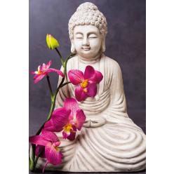 Poster - Affiche zen bouddha orchidée