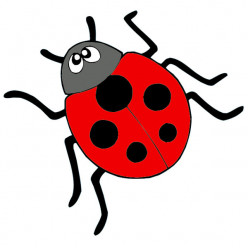 Stickers Coccinelle