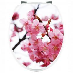 Stickers WC Cerisier