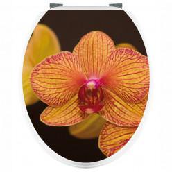 Stickers WC Orchidée Orange