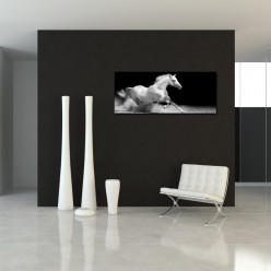 Tableau Forex Cheval