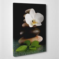 Tableau toile - Galets Orchidée