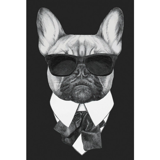 Poster - Affiche chien hipster