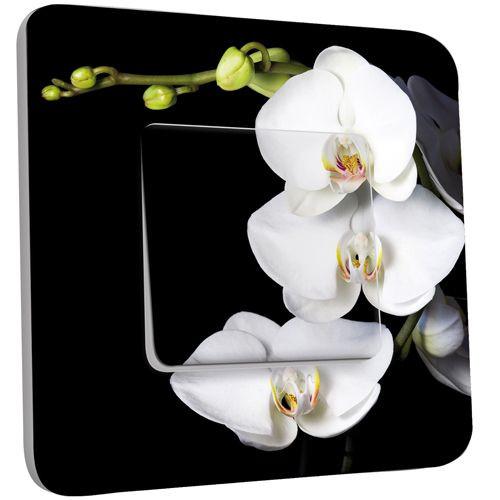 interrupteur d cor poussoir orchid es fond noir des prix 50 moins cher qu 39 en magasin. Black Bedroom Furniture Sets. Home Design Ideas