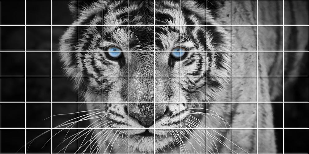 stickers carrelage tigre des prix 50 moins cher qu 39 en. Black Bedroom Furniture Sets. Home Design Ideas