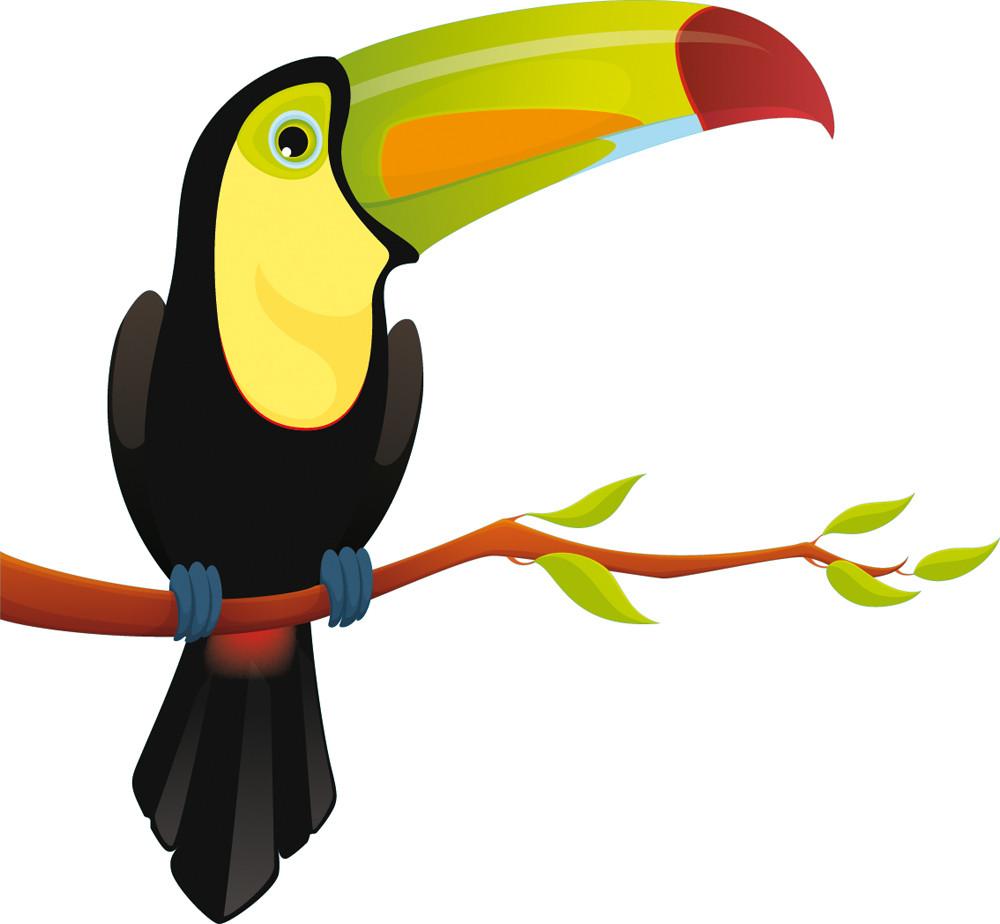 Stickers Oiseau Branche Des Prix 50 Moins Cher Qu En Magasin