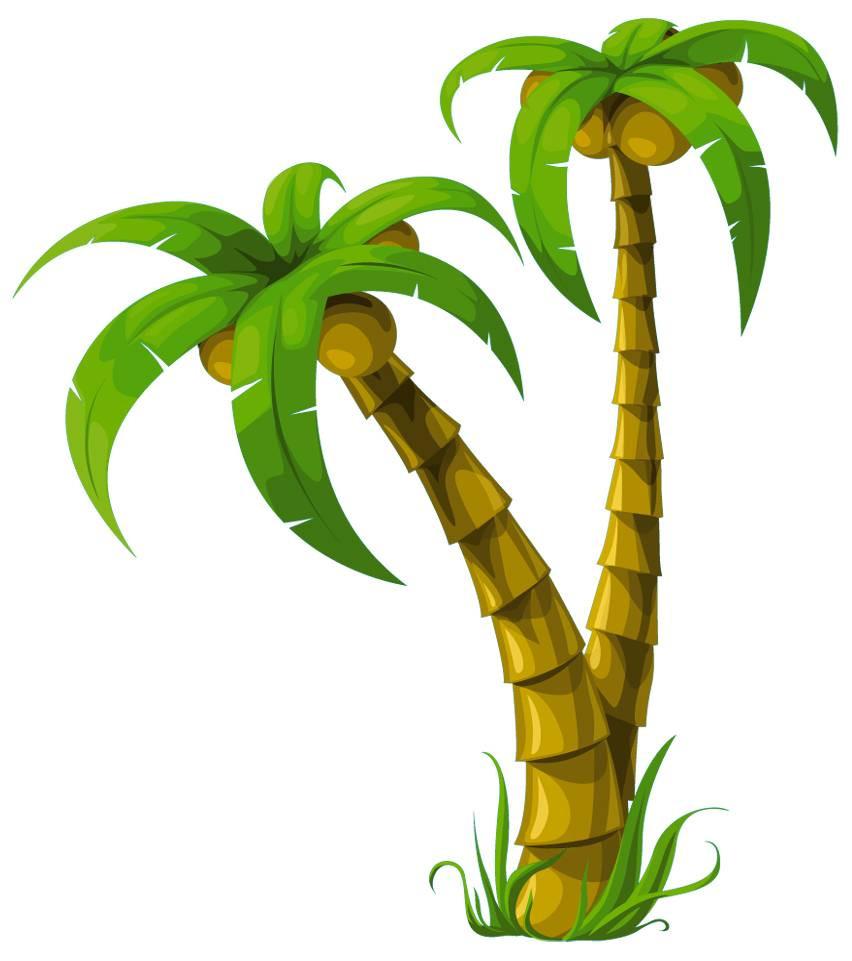 Stickers palmier des prix 50 moins cher qu 39 en magasin - Image palmier ...