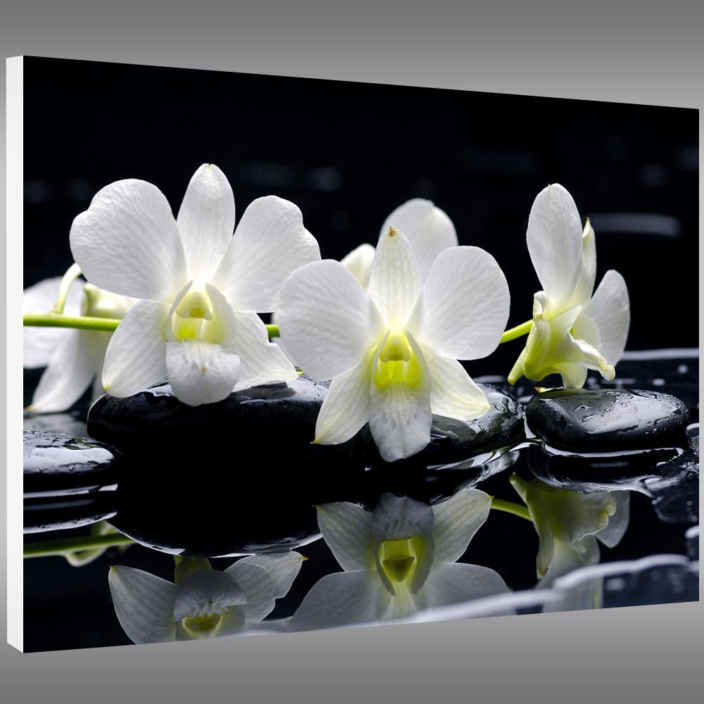 tableau forex orchid e des prix 50 moins cher qu 39 en magasin. Black Bedroom Furniture Sets. Home Design Ideas