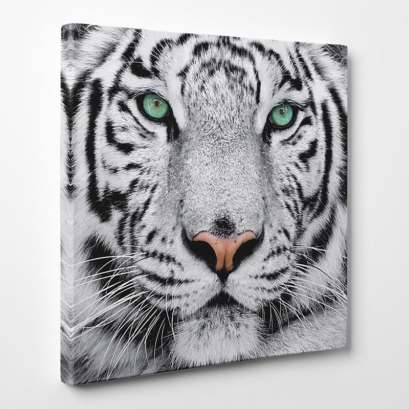 tableau toile tigre 3 des prix 50 moins cher qu 39 en magasin. Black Bedroom Furniture Sets. Home Design Ideas